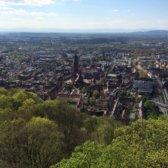 Blick auf Freiburg von oben. Häuser, Kirche, Bäume sind von oben zu sehen.