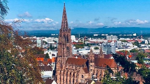 Blick auf das Freiburger Münster